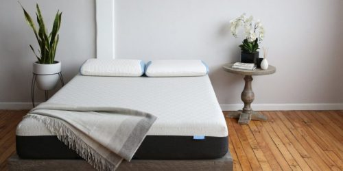 Bear Mattress and Pillow Giveaway