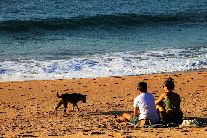 Sri Lanka Vacation Giveaway